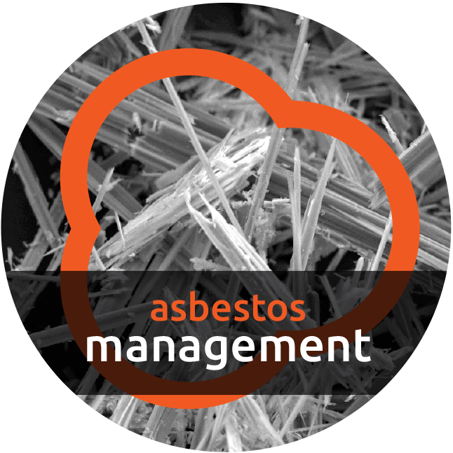 Amosite Asbestos Management Cambridge
